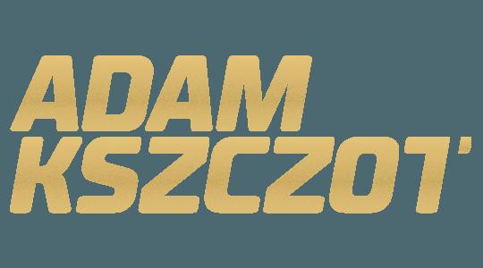 Wicemistrz Świata w biegu na 800 m  Londyn 2017 / Pekin 2015  Mistrz Europy  Zurych 2014 / Amsterdam 2015